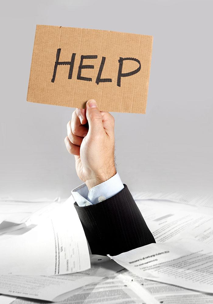 interim crisi management services